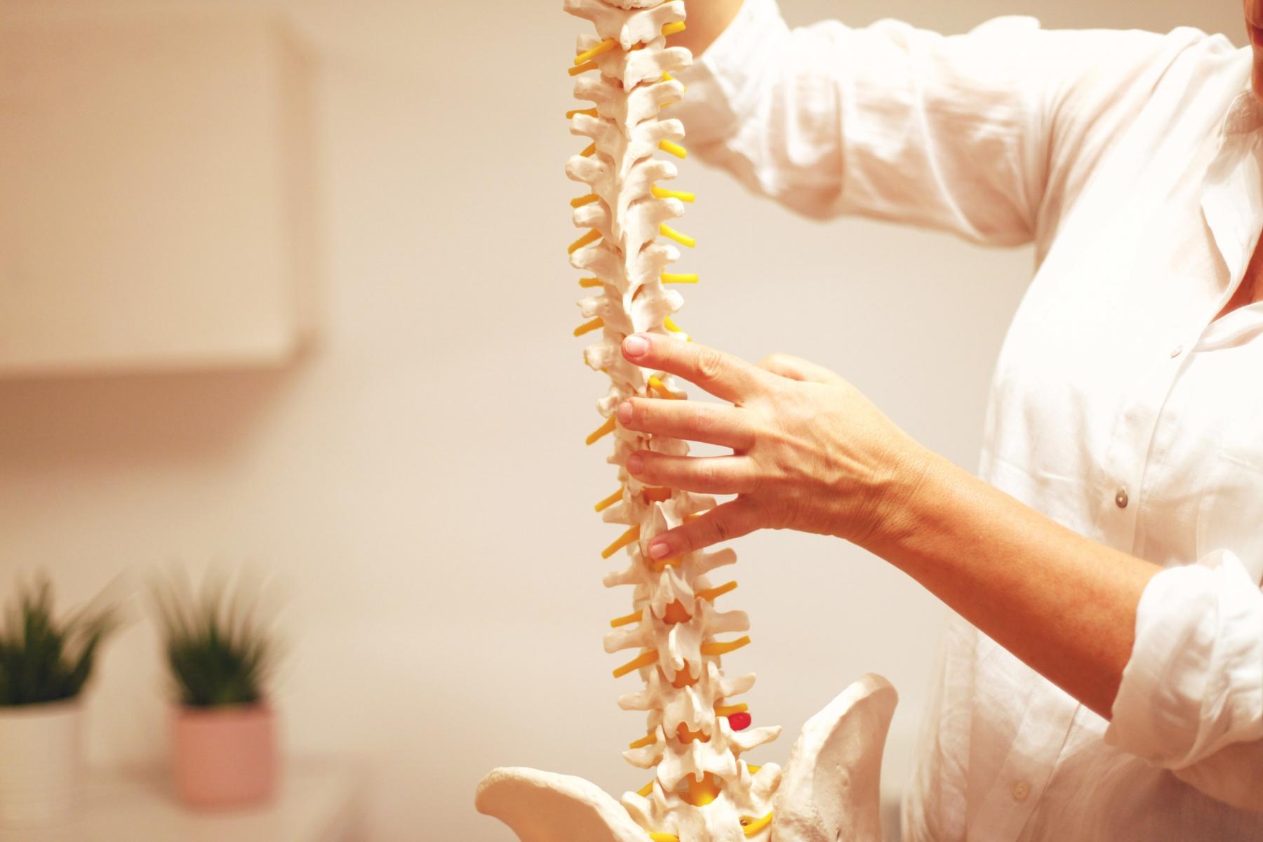 Vor allem der funktionelle Ansatz der Osteopathie findet bei vielen meiner männlichen Patienten großen Zuspruch und führt zu für sie nicht erhofften Heilerfolgen.